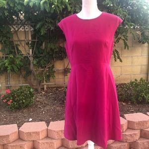 Vince Camuto Pink Fit and Flare Dress Size 8P
